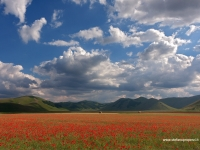 Castelluccio di Norcia (Italia)