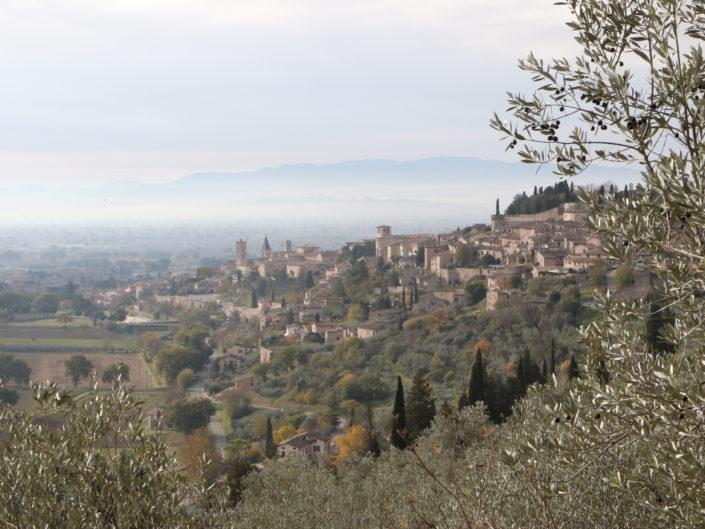 SPELLO: SENTIERO DELL'ACQUEDOTTO ROMANO E VIA DI FRANCESCO | 16 DICEMBRE 2018