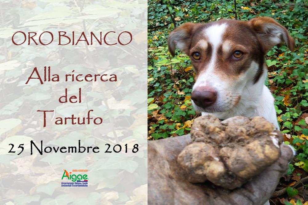 ORO BIANCO: ALLA RICERCA DEL TARTUFO | 25 NOVEMBRE 2018
